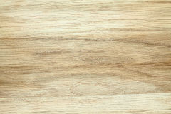 Текстура дерева бука Стоковое Изображение