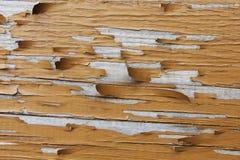 Текстура дерева с краской Стоковое фото RF