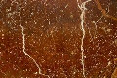 Текстура естественного коричневого цвета структуры мраморная с белыми чертами стоковое изображение