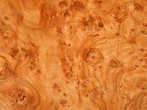 Текстура естественной древесины корень дуба Деревянная облицовка для продукции мебели стоковые изображения rf