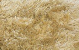 Текстура животного меха Стоковое Фото