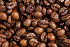 Текстура зажаренных в духовке кофейных зерен, взгляд сверху Стоковая Фотография