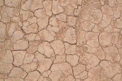 Текстура 5183 - засушливая треснутая земля Стоковое фото RF