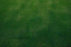 Текстура зеленой травы поля для гольфа Стоковые Изображения RF