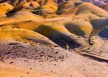 Текстура земли 7 покрашенная земель Стоковые Фотографии RF
