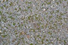 Текстура 7887 - земля Стоковые Фотографии RF