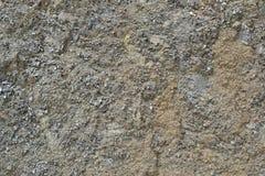 Текстура 8329 - земля Стоковое фото RF