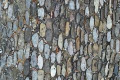 Текстура 8613 - земля Стоковая Фотография