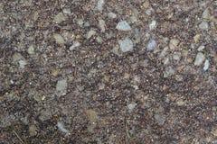 Текстура 7966 - земля Стоковое фото RF