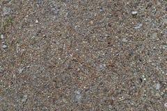 Текстура 7967 - земля Стоковые Фото