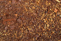 Текстура 8133 - земля Стоковое фото RF