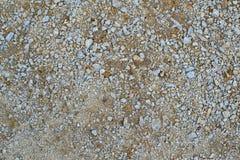 Текстура 7986 - земля Стоковая Фотография RF