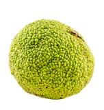 Текстура зеленого плодоовощ pomifera Maclura Стоковое фото RF