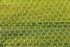 текстура зеленого цвета травы футбола поля предпосылки Стоковые Фото