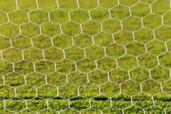 текстура зеленого цвета травы футбола поля предпосылки Стоковое Изображение RF