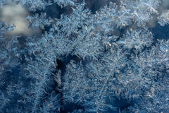 Текстура изморози льда стоковые изображения