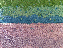 Текстура именниного пирога Стоковые Изображения