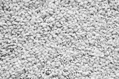 Текстура или предпосылка риса зерна Стоковое Изображение RF