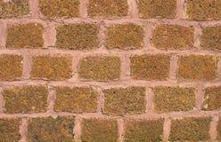 Текстура и предпосылка каменной стены Стоковое Изображение