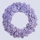 Текстура и предпосылка картины цветков вышивки фиолетовые на gr Стоковые Изображения RF