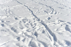 Текстура и следы ноги снега в снеге стоковое изображение