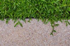 Текстура и трава гравия для предпосылки Стоковые Фотографии RF