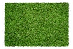 текстура иллюстрации травы произведения искысства ваша Стоковое фото RF