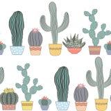 Текстура кактусов безшовная Succulents, домашние цветки, комнатные растения в баках Стоковые Изображения RF