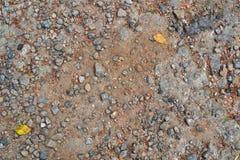 Текстура 3682 - каменистый грунт Стоковое Изображение