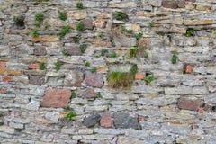 Текстура 1702 - каменная стена Стоковое Фото