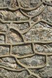 Текстура 5093 - каменная стена Стоковое Изображение