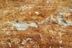 Текстура 4893 - камень Стоковое фото RF