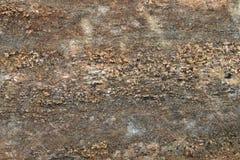 Текстура 4917 - камень Стоковые Фото