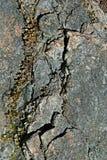 Текстура камня гранита Стоковые Изображения