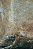 Текстура камня гранита Стоковое фото RF