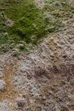 текстура камня детали конца предпосылки зодчества вверх Стоковое Изображение