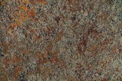 Текстура камня моря с ржавчиной Стоковые Изображения RF