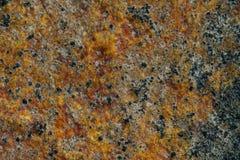 Текстура камня моря с ржавчиной Стоковое фото RF