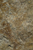 текстура камня утеса мха Стоковое фото RF