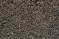 текстура камня утеса мха Стоковые Фотографии RF