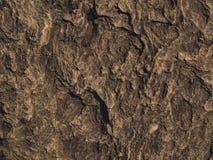 текстура камня утеса мха Стоковое Фото