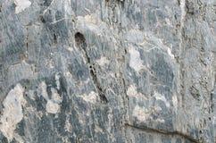 Текстура камня Стоковая Фотография RF