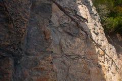 Текстура камня Coba, Мексика, Юкатан Стоковое фото RF