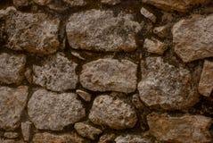 Текстура камня Coba, Мексика, Юкатан Стоковая Фотография RF