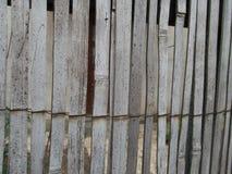 Текстура камышовой загородки стоковое изображение