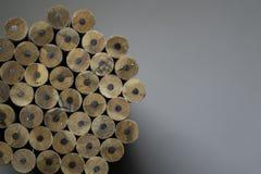 Текстура карандашей Стоковое Изображение