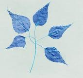 текстура картины листьев предпосылки голубая темная Стоковые Фотографии RF