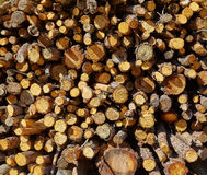 Текстура картины wook огня швырка Стоковая Фотография