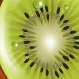 Текстура кивиа с взглядом падений детальным иллюстрация штока