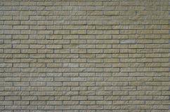 Текстура кирпича стоковые фото
